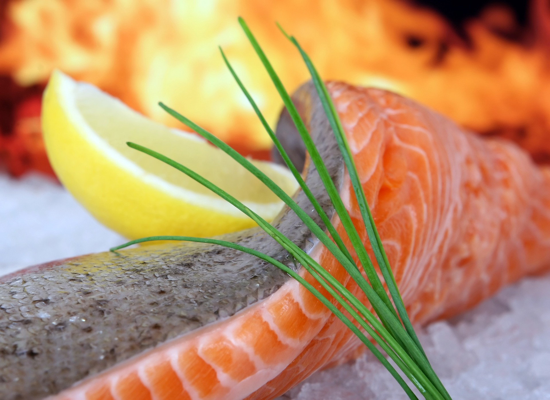 fisk-fed-sundkost-winfit